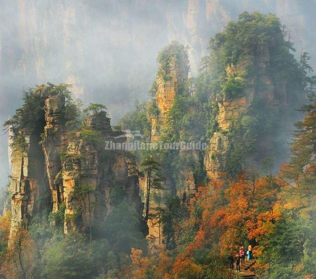 Charming  Zhangjiajie in Four Seasons