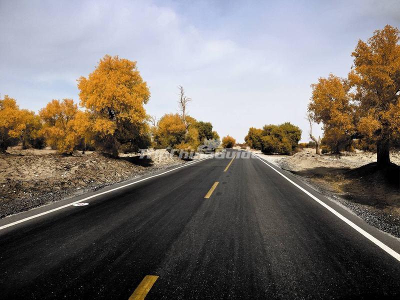 Tarim Desert Highway